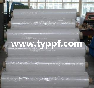 200Micron Greenhouse poly film